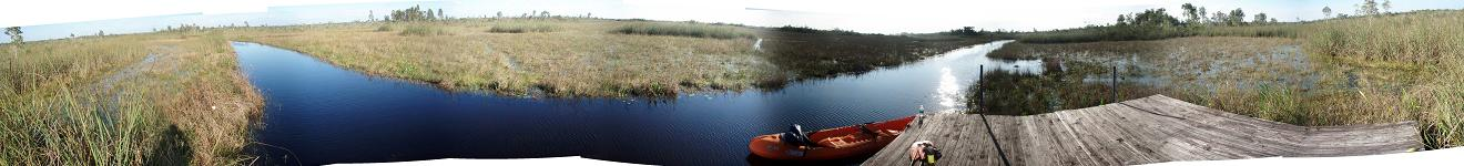 Loxahatchee Swamp in south Florida.