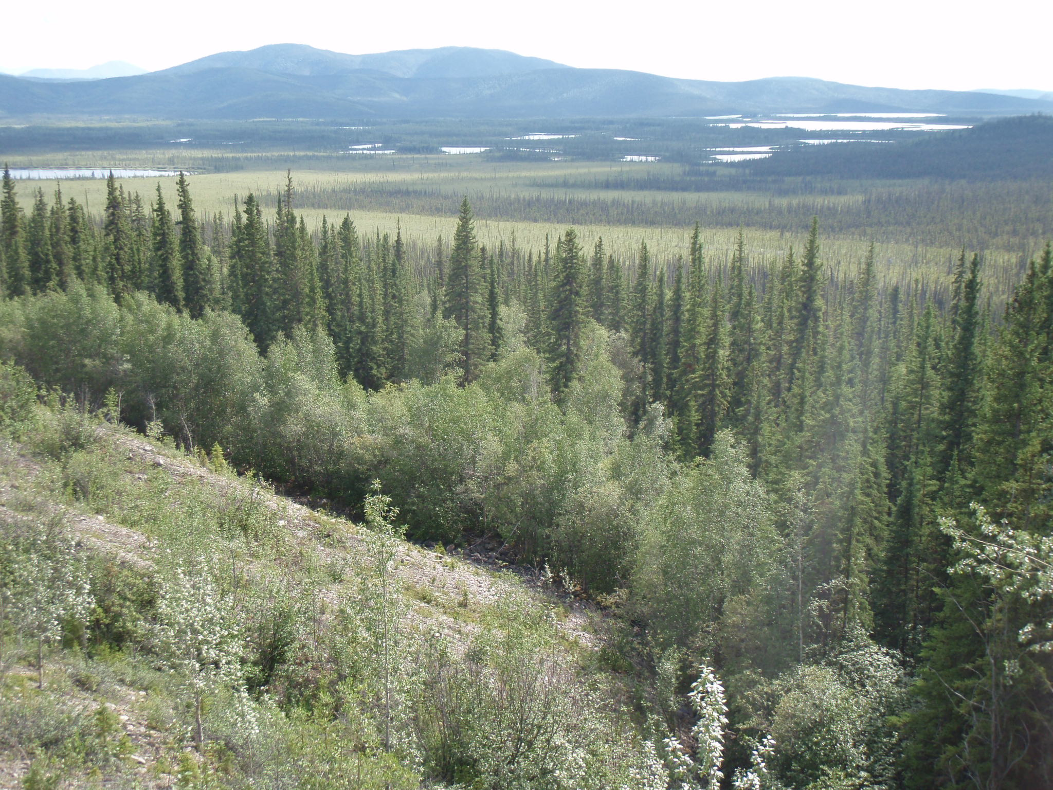 View South into the Teslin National Wildlife Refuge