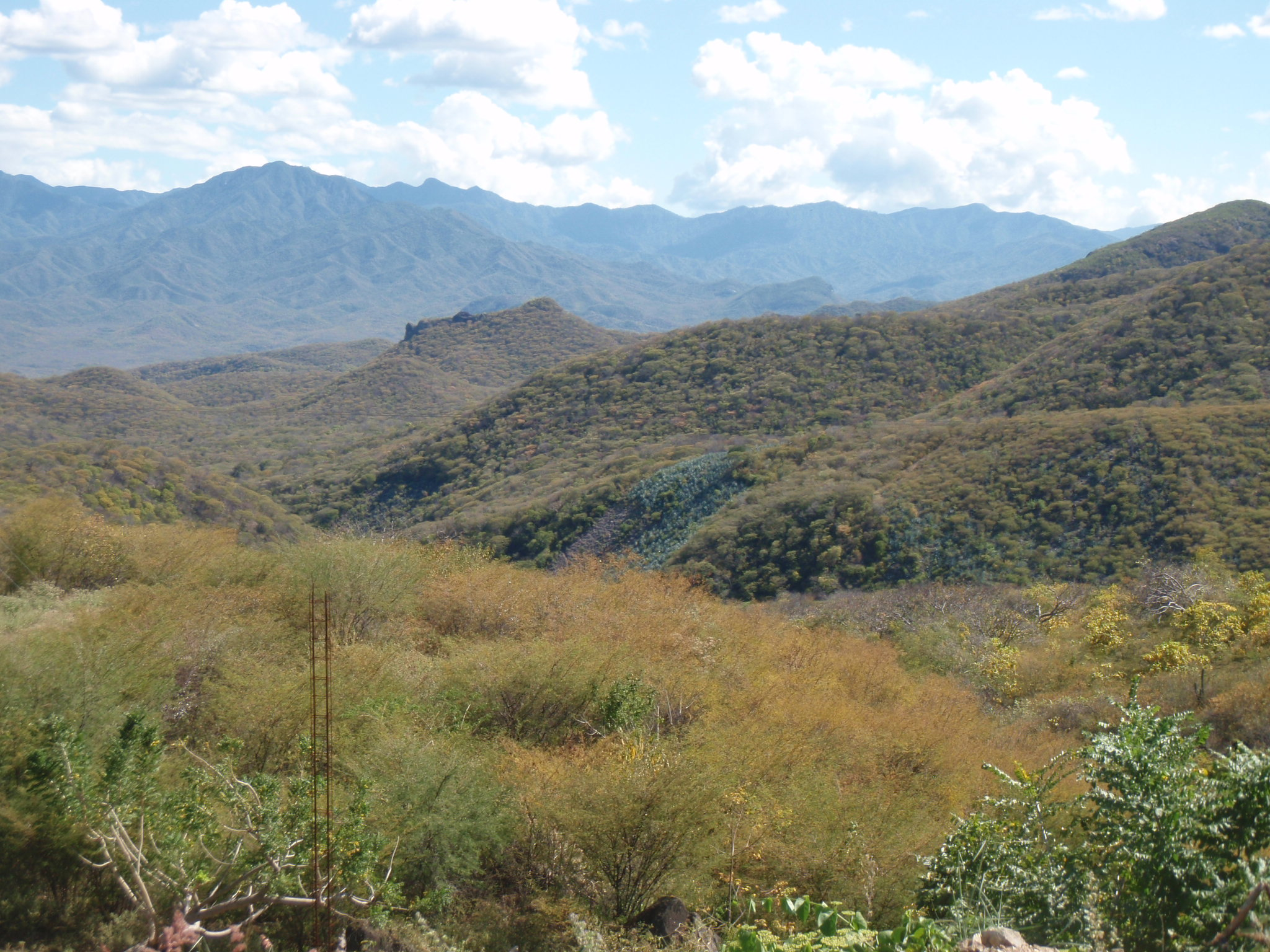 Sheer endless mountains need to be crossed in the Oaxaca district
