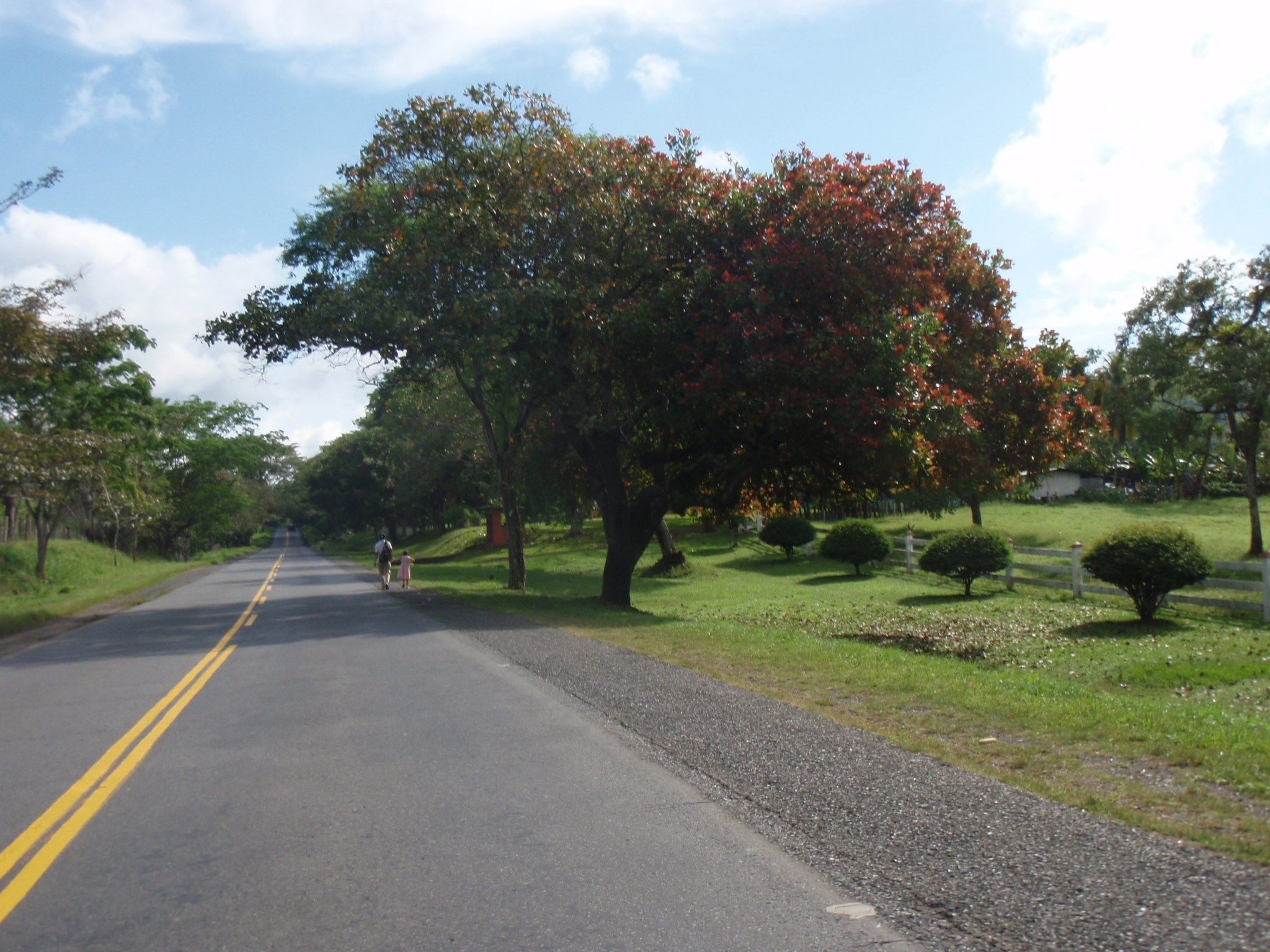 Another beautiful stretch of Panamerican Highway in Panama