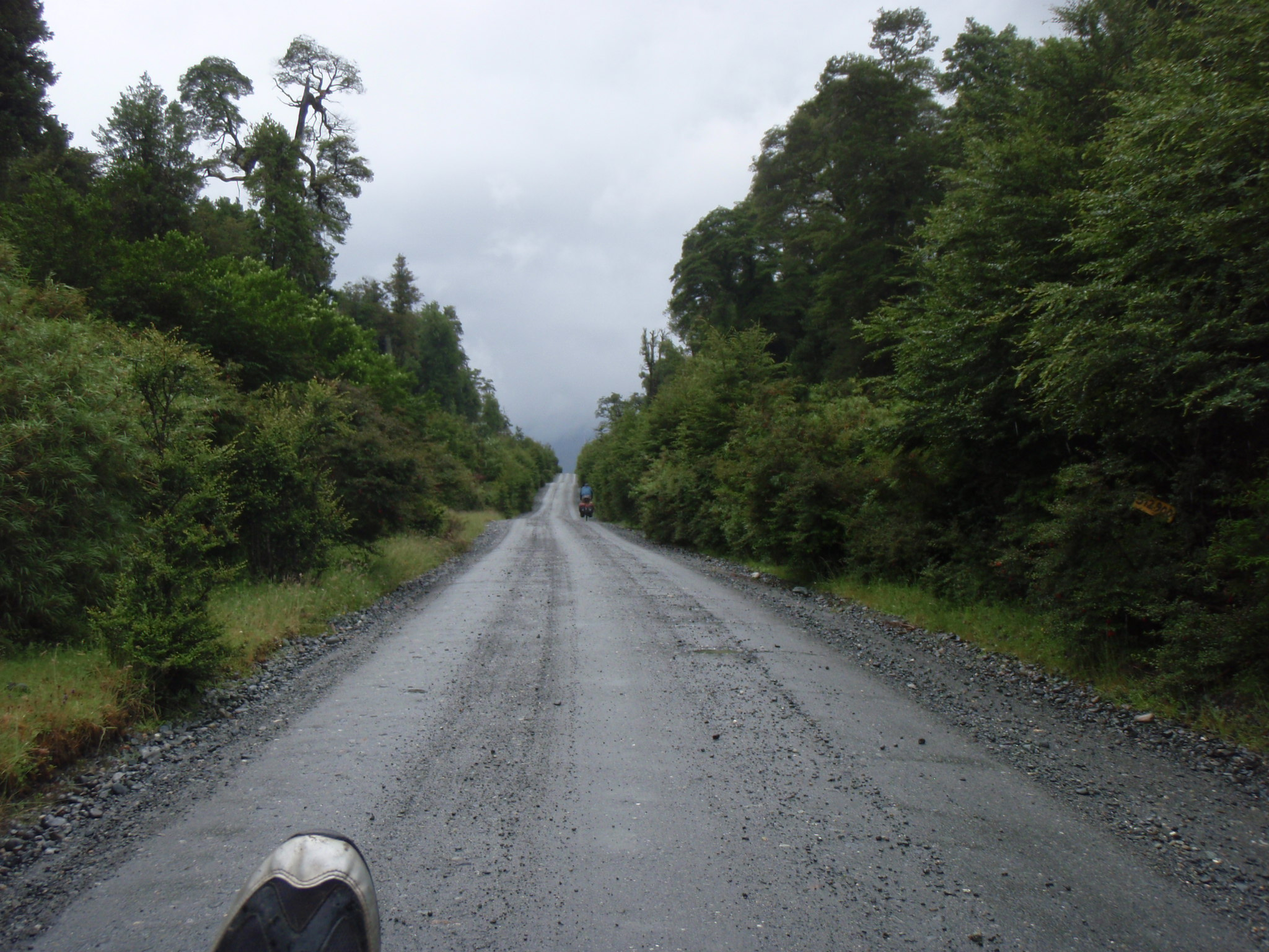 More rainy road through the rainforest ahead
