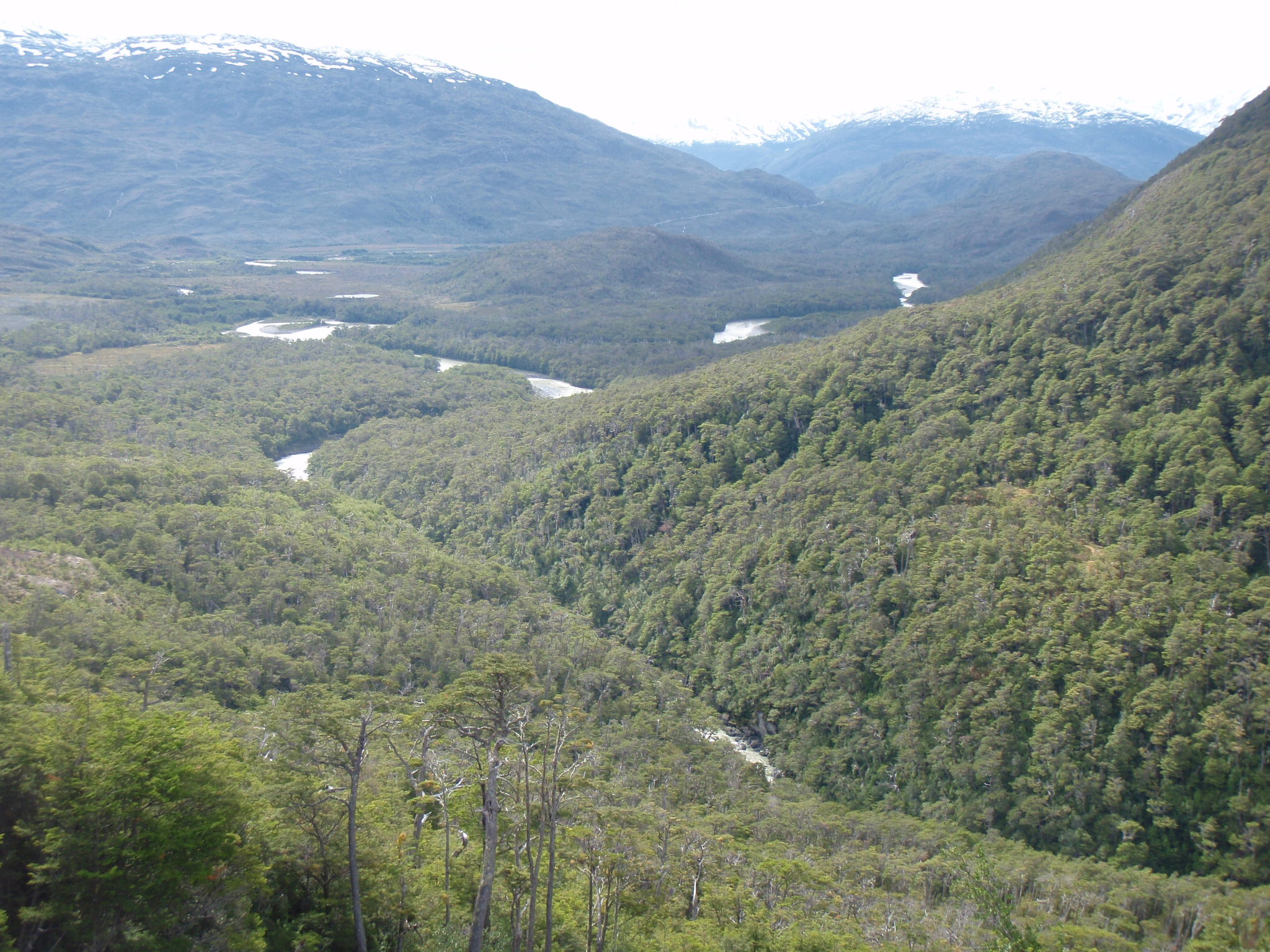 Stunning views of rainforest and rivers from the Carreterra Austral near Puerto Yungas
