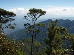 Summit view from Las Minas