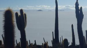 Stunning views from the top of Isla Incahuasi across the Salar de Uyuni and the Cordillera peaks in the distance