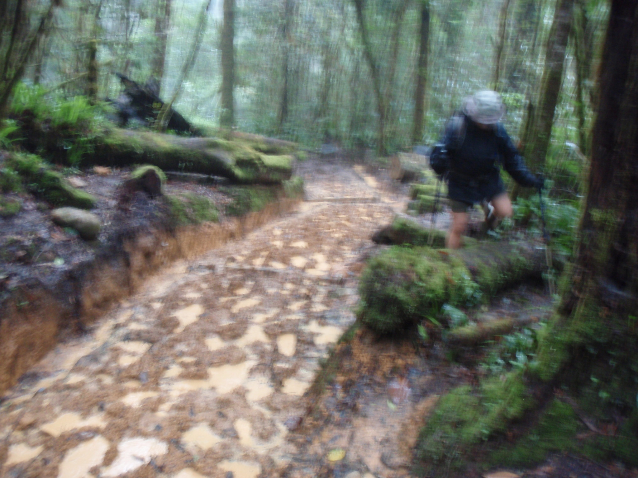Descending a very muddy path in pouring rain